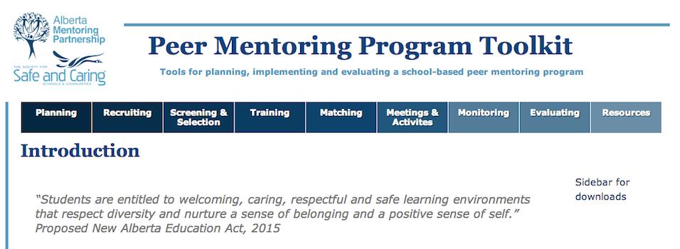 Teen Mentoring Program Toolkit